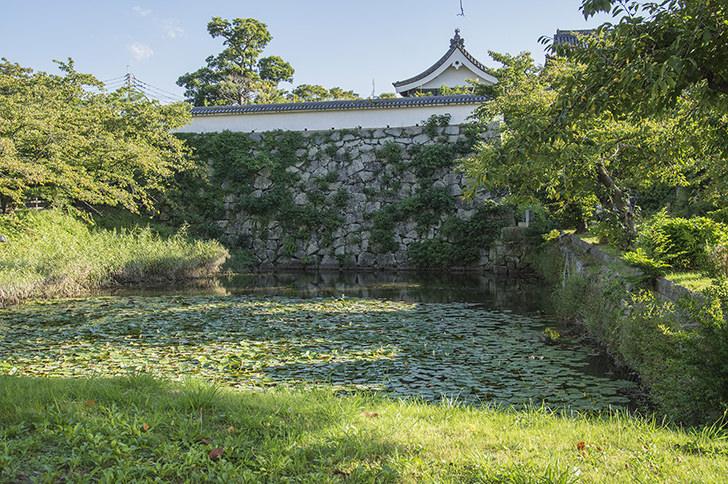 福岡城 博多